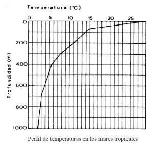perfil_de_temperaturas_en_los_mares_tropicales